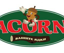 Изработка на лого Acorn