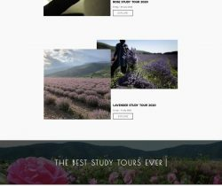 Изработка на сайт за BULGARIASTUDYTOUR